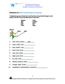 Vocabulary Worksheets Basic English 3rd Edition Chapter 6: Nouns and Pronouns Worksheet