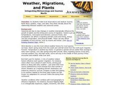Weather, Migrations, and Plants Lesson Plan