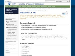 Wetland in a Pan Lesson Plan