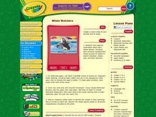 Whale Watchers Lesson Plan