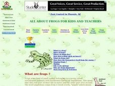 What are Frogs? Lesson Plan