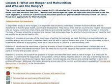 What are Hunger and Malnutrition and Who Are the Hungry?: Ethics, Food, Global Cultures Lesson Plan