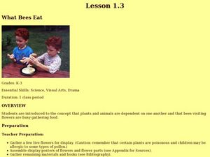 What Bees Eat Lesson Plan