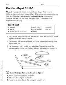 What Can a Magnet Pick Up? Worksheet
