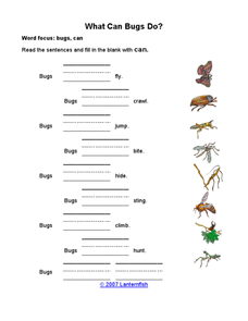 What can bugs do? Worksheet