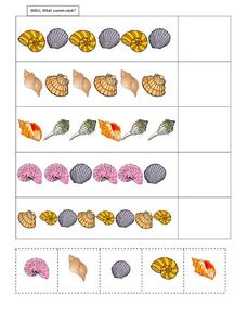 What Comes Next? Shells Worksheet