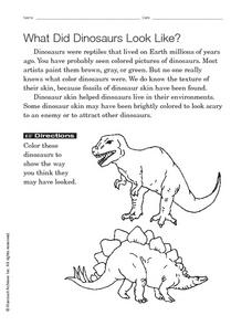 What Did Dinosaurs Look Like? Worksheet
