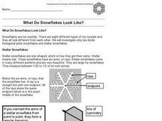 What Do Snowflakes Look Like? Worksheet