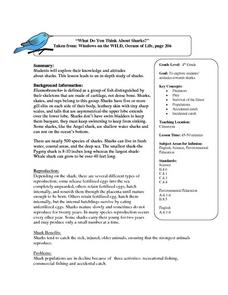 What Do You Think About Sharks? Lesson Plan