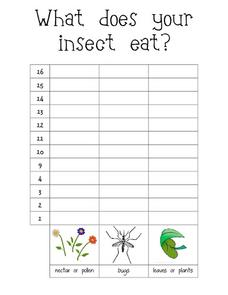 What Does Your Insect Eat?-- Class Bar Graph Worksheet
