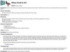 What Food Is It? Lesson Plan