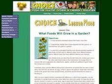 What Foods Will Grow In a Garden? Lesson Plan