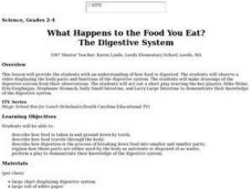 What Happens to the Food You Eat? The Digestive System Lesson Plan