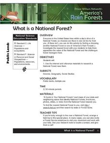 What is a National Forest Lesson Plan