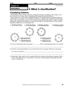 What is Classification? Worksheet