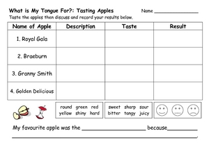 What is My Tongue For?: Tasting Apples Worksheet