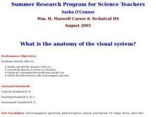 What is the Anatomy of the Visual System? Lesson Plan