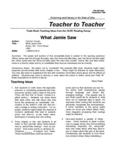 What Jamie Saw Lesson Plan