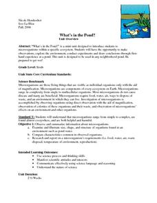 What's in the Pond? Lesson Plan
