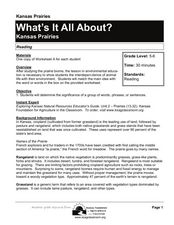 What's It All About? Lesson Plan