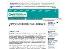 What's Outside the Cell Membrane ? Lesson Plan