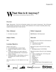 What Size Is It Anyway? Lesson Plan