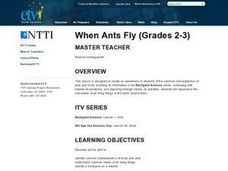When Ants Fly Lesson Plan