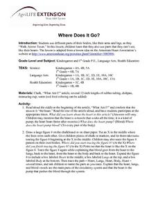 Where Does It Go? Lesson Plan