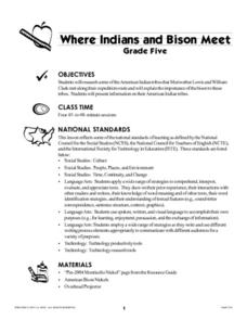 Where Indians and Bison Meet Lesson Plan