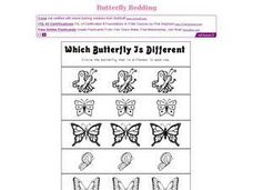 Which Butterfly Is Different? Worksheet