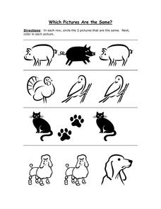 Which Pictures Are the Same? Animals 5 Worksheet