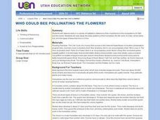 Who Could Bee Pollinating the Flowers? Lesson Plan