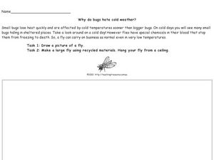 Why Do Bugs Hate Cold Weather? Worksheet