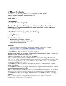 Wild and Wetlands Lesson Plan