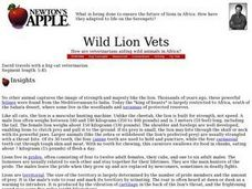Wild Lion Vets Lesson Plan