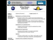 Wing Shapes and Areas Lesson Plan