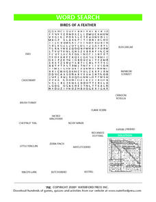 Word Search: Birds of a Feather Lesson Plan