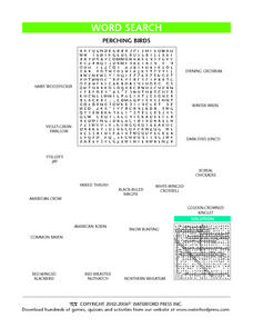 Word Search: Perching Birds Lesson Plan