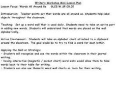 Words All Around Us Lesson Plan