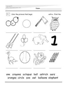 Words Beginning with Oo Worksheet