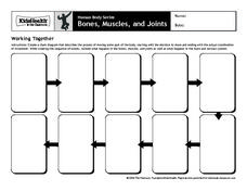 Working Together Worksheet