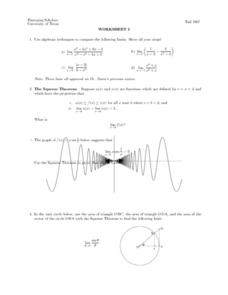Worksheet 5 - Squeeze Theorem Lesson Plan