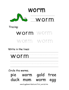 Worm Trace and Write Worksheet