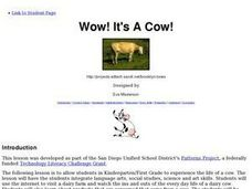 Wow! It's A Cow! Lesson Plan