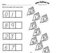 Write the Number that Comes After- Kindergarten Counting Worksheet