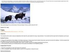 Yaks Lesson Plan