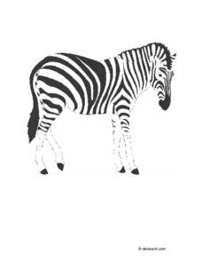 Zebra Picture Worksheet