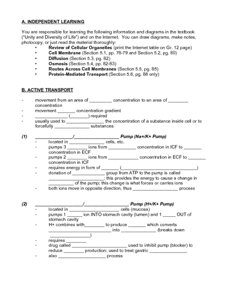 Worksheet Cell Transport Worksheet cell transport worksheet key 9th grade delwfg com active higher ed lesson planet