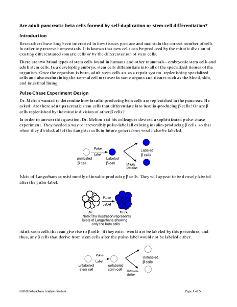 Printables Cell Differentiation Worksheet cell differentiation worksheet davezan bloggakuten