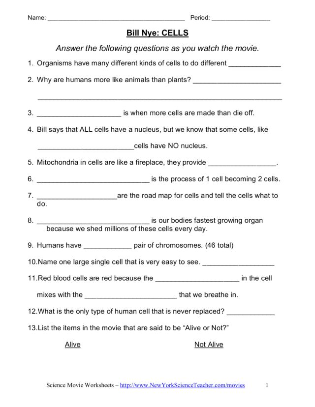 Printables Bill Nye Cells Worksheet bill nye cells video worksheet 6th 7th grade lesson planet